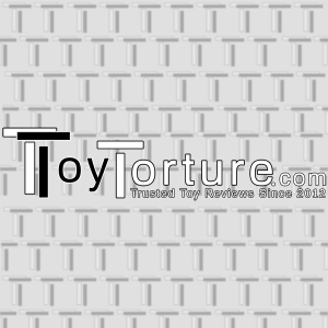 Toy Torture Logo in Black and white lettering on a textured grey background