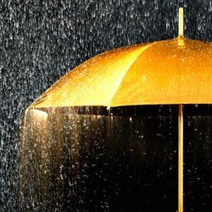 Golden Shower on a Golden Umbrella